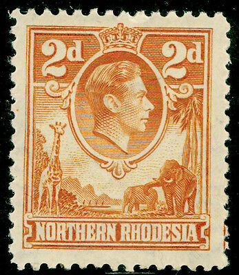 NORTHERN RHODESIA SG31, 2d yellow-brown, LH MINT. Cat £50.