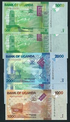 Five Bank Of Uganda 2 X 5000 2 X 2000 1 X 1000 Shilling Banknotes Mint Unc 2010