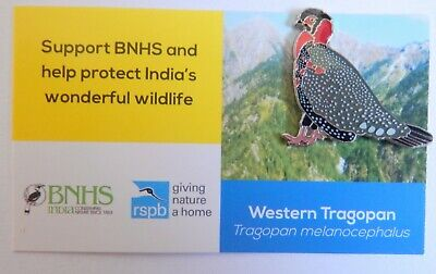 Special Picture * RSPB PIN BADGE BNHS SAVE ASIA/'S VULTURES VULTURE *