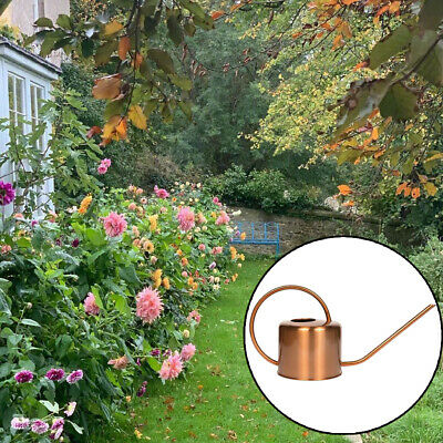 Vintage Watering Pot Stainless Steel Can Long Mouth for Garden Flower Plant Tool
