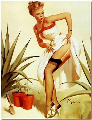 """411.Quality Design poster/""""Pinup girl from Countryside/""""Guajirita.Home interior"""