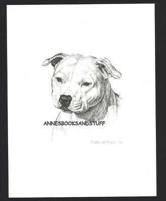 #399 English STAFFORDSHIRE TERRIER dog art print Pen & ink drawing  Jan Jellins