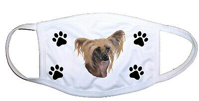 Chinese Crested Cloth Mask LP 28069 M