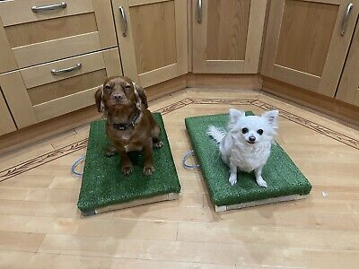 Working Gun dog Training Stand   Mat Boundary-Control Also Suitable For All Dogs