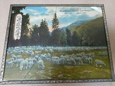 Vintage Advertising Sibley, Iowa Stegemann's Grocery Thermometer Sheep Herd