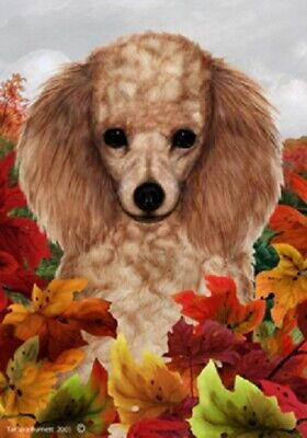 Fall Garden Flag - Apricot Poodle 130161