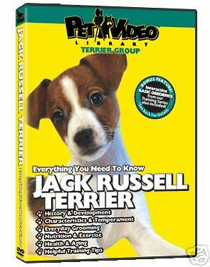 Pet Video Dog Breed Specific DVD Jack Russell Terrier