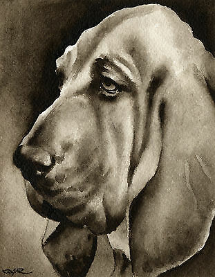 BLOODHOUND Watercolor Dog ART PRINT Signed by Artist DJR