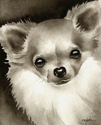 Long Haired Chihuahua Art Print Sepia Watercolor Painting by Artist DJR