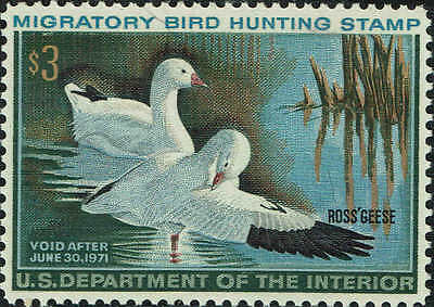 """Rw#37 1970 $3 """"Ross's Geese"""" Duck Stamp Mint-Og/Nh--Vf/Xf"""