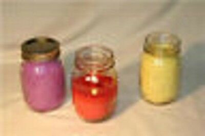 16 Ounce Soy Candle - You Choose Scent! , Soy Wax,Glass Jar Free Shipping