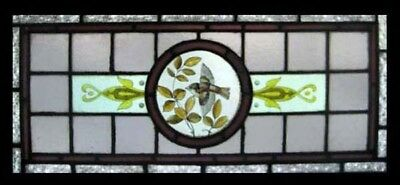 Victorian Painted Bird In Foliage Antique English Stained Glass Window