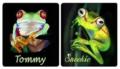 4 Frogs Decals Bumper Stickers Personalized With Name