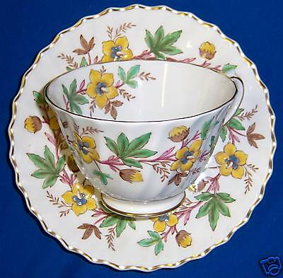 Royal Doulton CHATSWORTH H4794 Cup and Saucer