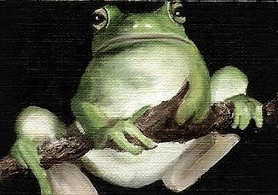 FROG ACEO Gloss Mini Art PRINT of Painting by VERN