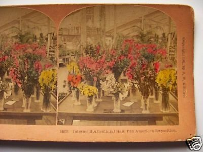 1902 Horticultural, Pan American Exposition, Stereoview