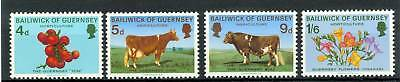 Mucche - Cows & Flowers Guernsey 1970