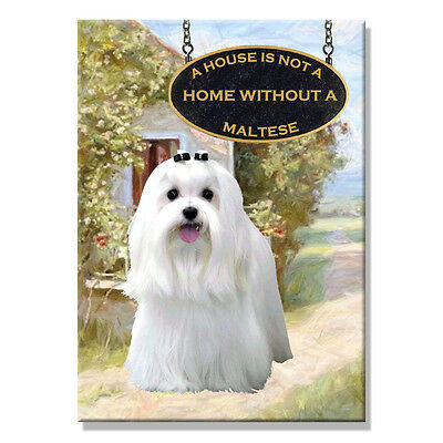 MALTESE A House Is Not A Home FRIDGE MAGNET New DOG