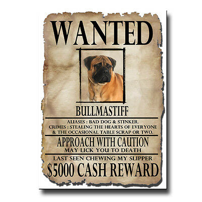 BULLMASTIFF Wanted Poster FRIDGE MAGNET No 1 DOG Funny