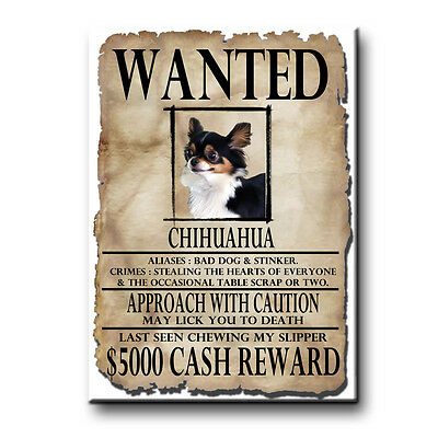 CHIHUAHUA Wanted Poster FRIDGE MAGNET No 2 DOG