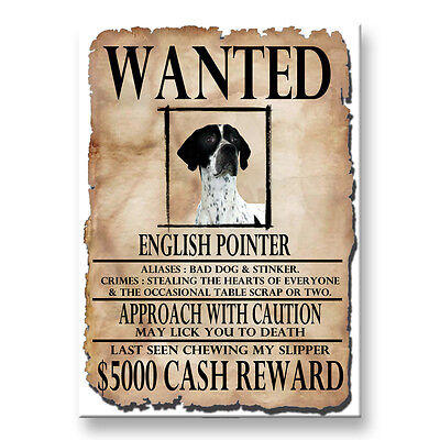 ENGLISH POINTER Wanted Poster FRIDGE MAGNET No 1 DOG