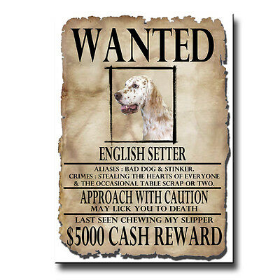 ENGLISH SETTER Wanted Poster FRIDGE MAGNET No 1 DOG