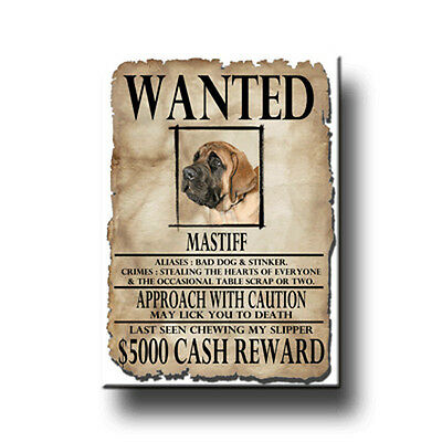 MASTIFF Wanted Poster FRIDGE MAGNET New DOG