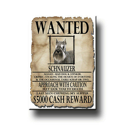 SCHNAUZER Wanted Poster FRIDGE MAGNET New DOG Funny