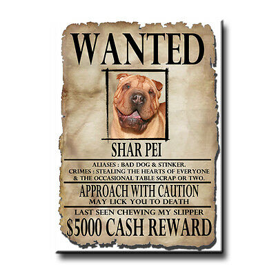 SHAR PEI Wanted Poster FRIDGE MAGNET No 3 DOG Funny