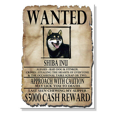 SHIBA INU Wanted Poster FRIDGE MAGNET No 2 New DOG