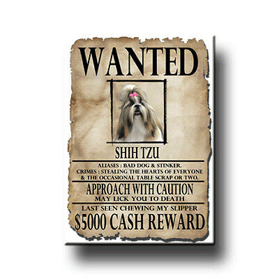 SHIH TZU Wanted Poster FRIDGE MAGNET New DOG Funny