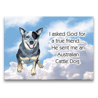 AUSTRALIAN CATTLE DOG True Friend From God MAGNET