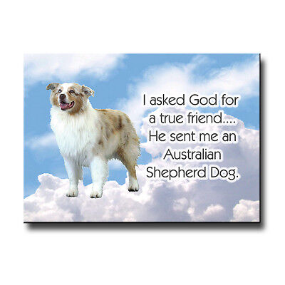 AUSTRALIAN SHEPHERD DOG True Friend From God MAGNET