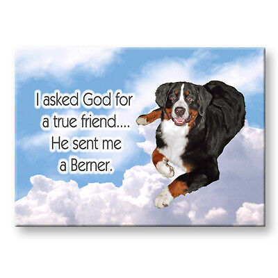 BERNESE MOUNTAIN DOG True Friend From God FRIDGE MAGNET
