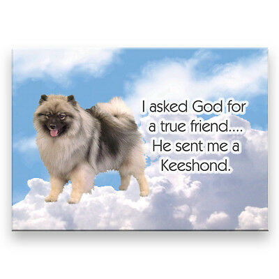 KEESHOND True Friend From God FRIDGE MAGNET New DOG