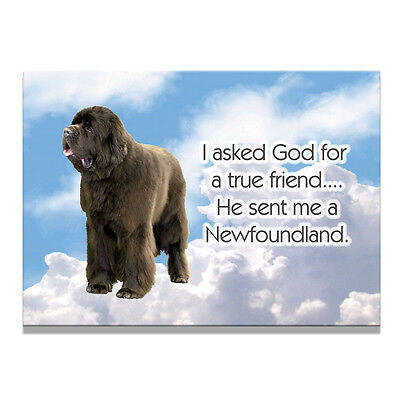 NEWFOUNDLAND True Friend From God FRIDGE MAGNET No 1