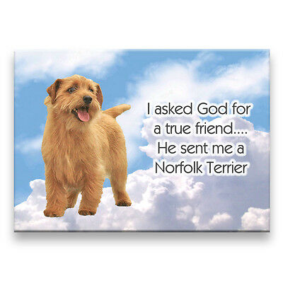 NORFOLK TERRIER True Friend From God FRIDGE MAGNET Dog