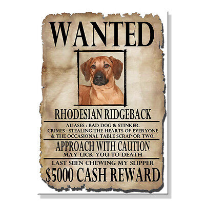 RHODESIAN RIDGEBACK Wanted Poster FRIDGE MAGNET New DOG