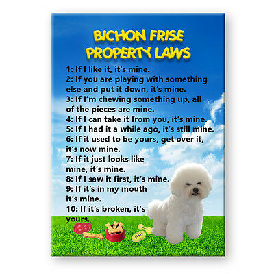 BICHON FRISE Property Laws MAGNET Steel Cased DOG Funny