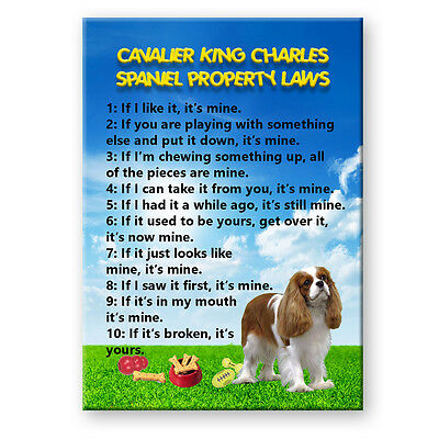 CAVALIER KING CHARLES SPANIEL Property Laws FRIDGE MAGNET No 2