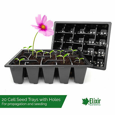Nutley/'s biodegradeable seed trays half size recyclable compostable greenhouse