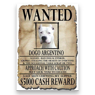 DOGO ARGENTINO Wanted Poster FRIDGE MAGNET Funny