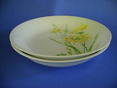 2 Coupe Soup Bowls Montgomery Ward Summerdays Cereal