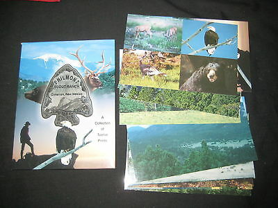 Phlimont Collection of 12 postcards in a folder     c10