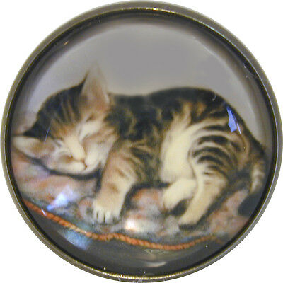 """1"""" Crystal Low Dome Button of a Kitten on Fluffy Pillow FREE US SHIPPING"""