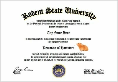 Hamsters Diploma - Hamster Lover Diploma