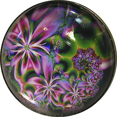 Crystal Dome Button Mystical Spiral #4 Lg Sz 1 & 3/8""