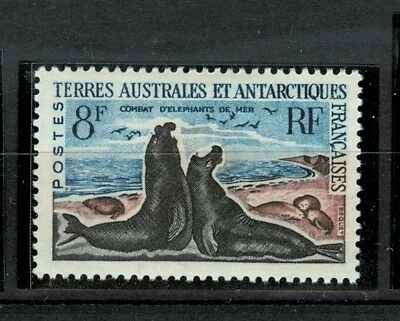 ELEFANTE MARINO - SEA ELEPHANT  T.A.A.F. FRENCH ANCTARCTIC TERR 1962 Common St