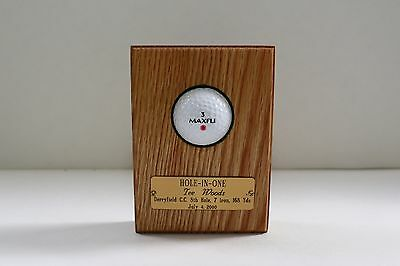 Hole-In-One  Wall  Display (Solid Oak)