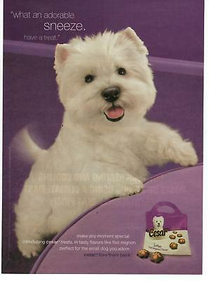 2009 Cesar Softies Dog Pup Treats White Westie Magazine Print Advertisement Page